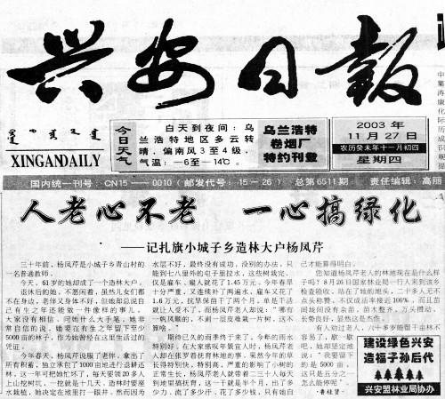 杨某芹职务侵占、诈骗无罪辩护案